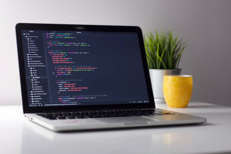 Languages You Should Learn for Web Development